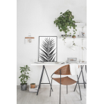 Tirage photo Palm Leaf