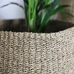 Grand panier ou pot pour plantes vertes