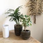 Photophore ou pot pour plantes en verre et métal