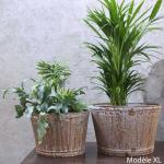 Grand Cache-Pot fleur ou plantes rustique en Zinc