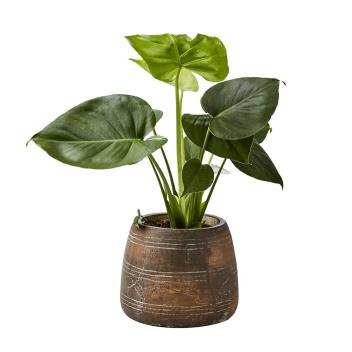 Cache-Pot Marron en terre cuite esprit Rustique et Bohème chic