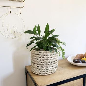 Panier cache-pot en Palmier pour toutes vos plantes ou fleurs
