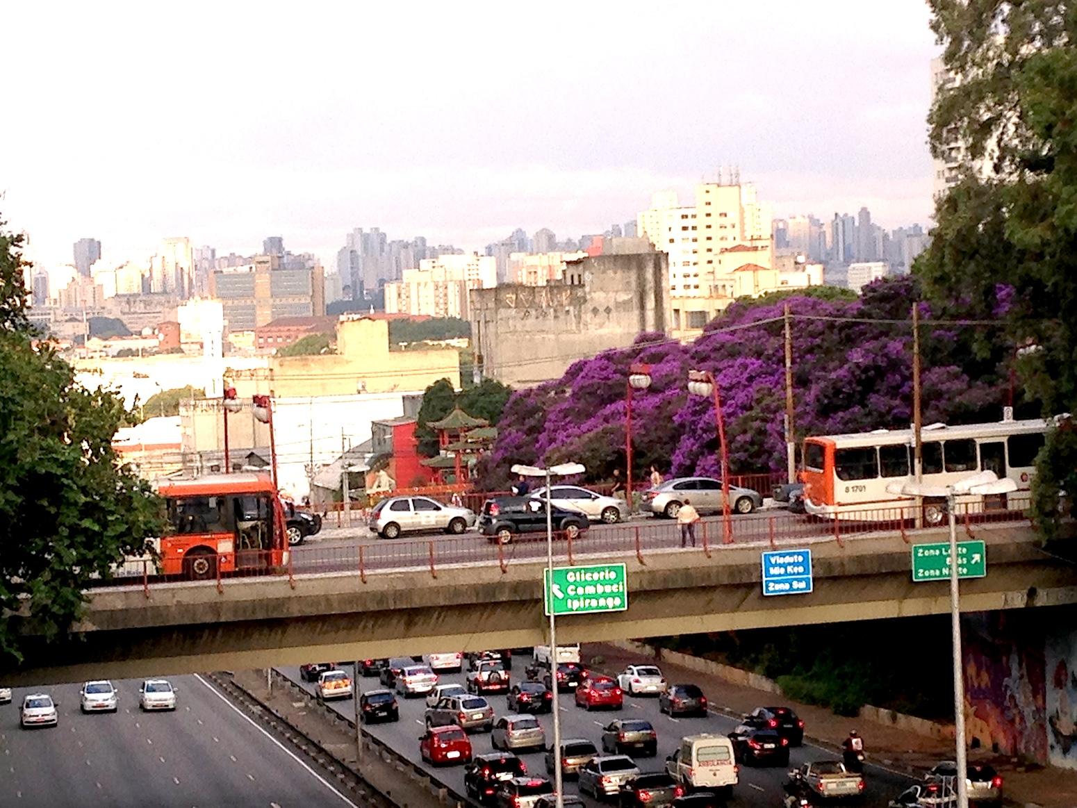 vue brésil d'une route