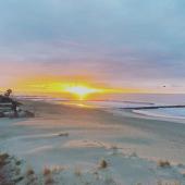 Mybohem vous souhaite un beau dimanche ! ☀️ Nous continuons notre visite de la région de Montpellier mais aujourd'hui côté nature 🌿 . . #montpelliercity #carnonplage #sunrisephotography #boheme #decoaddicts #decoboheme #mybohem