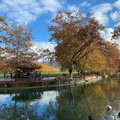 Annecy en Automne 🍂😍 . . . #mybohem #annecyfrance #automne🍂 #boheme #viedeboheme #nature
